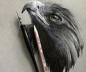 art, drawing, and eagle image