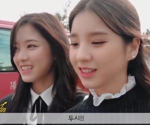 asian, korean, and hyunjin image