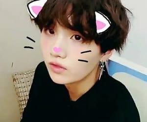 yoongi bts cat image