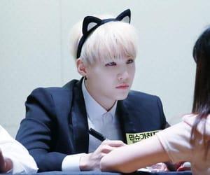 yoongi cat image