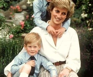 princess diana, prince harry, and prince william image