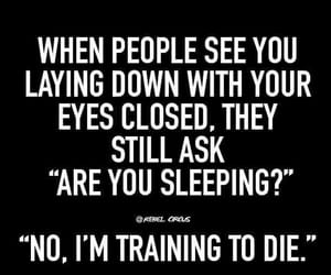 funny, sarcasm, and sleeping image