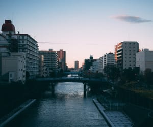 colour, japan, and tokyo image