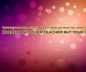 india, quotes and sayings, and quoteoftheday image