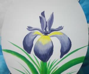 pintura and lirio image