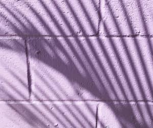 lavender, lilac, and lines image