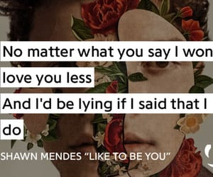 quote, shawn mendes, and love image