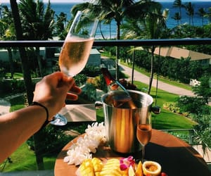 champagne, Hot, and palm trees image