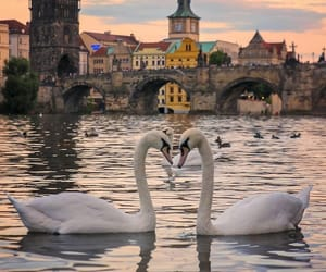 czech republic and prague image