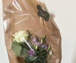 flower, soft, and violet image