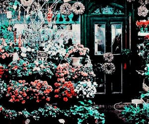 header, flowers, and twitter image