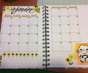fleur, flower, and june image