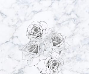 rose, wallpaper, and love image