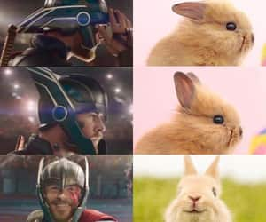 thor, Marvel, and cute image
