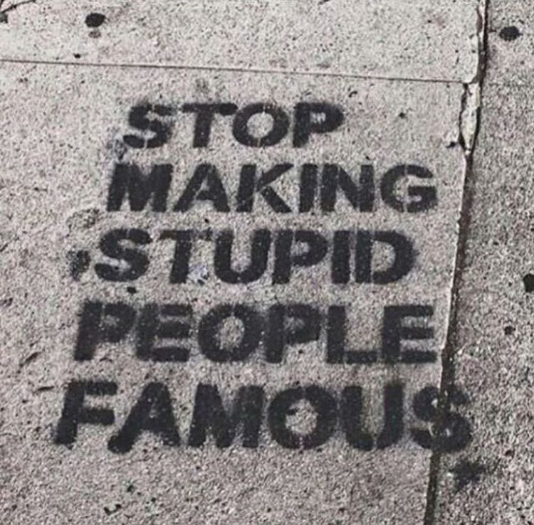 famous, quotes, and stupid image