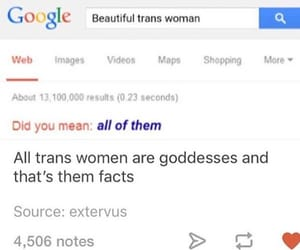 pride, trans, and lgbt image