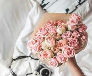 bedroom, flowers, and photography image