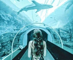 aquarium, blue, and girl image