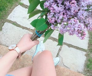 flowers, lilac, and spring image