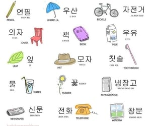 education, korea, and korean image