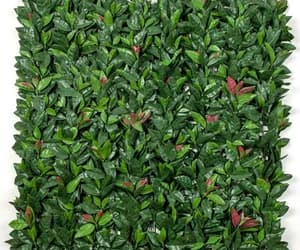artificial ivy wall, artificial ivy garlands, and ivy leaf hedge image