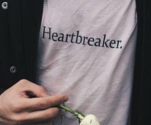 rose, heartbreaker, and boy image