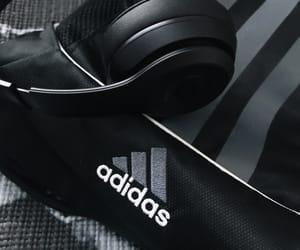 adidas, aesthetic, and bears image