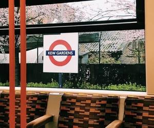 kew gardens, travel, and london life image