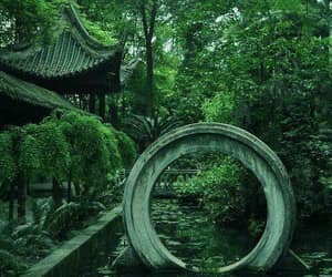 fantasy, forest, and japanese image