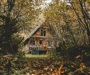 beautiful, cabin, and calm image