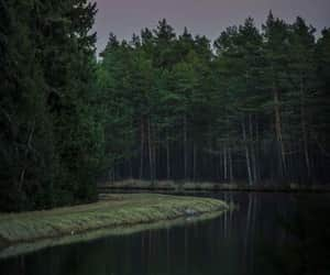 river, forest, and moon image