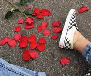 rose, vans, and red image