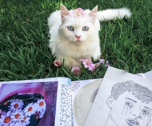 cat, flowers, and art image