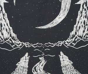 moon, wolf, and black image