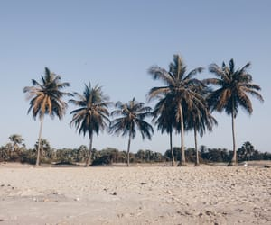 africa, beach, and Hot image
