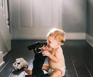 baby, dog, and fashionista image