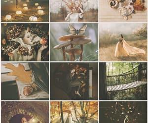 autumn, inspiracion, and estacion image