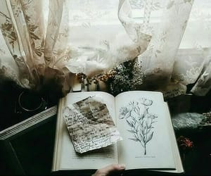 article, story, and notebook image