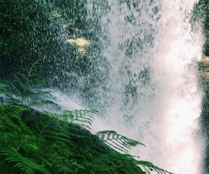 green, waterfall, and hikes image