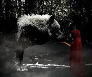 wolf, dark, and fantasy image