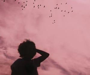 sky, pink, and bird image