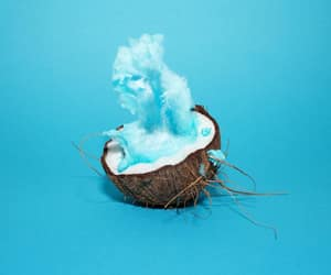 blue, art, and coconut image