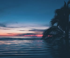 artsy, photographer, and acapulco image