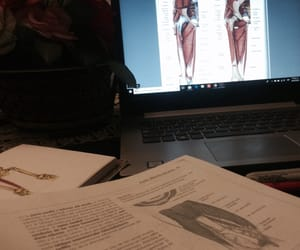 love it, musculos, and medicina image