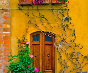 house, door, and flowers image