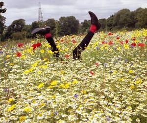 flowers, indie, and legs image