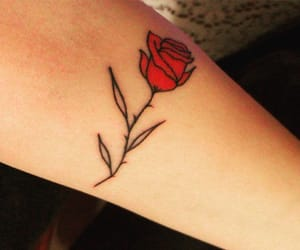 flower, inked, and red image