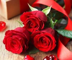 amor, rosas rojas, and corazón image