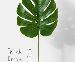 do, Dream, and green image