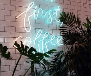 blue, coffee, and plants image